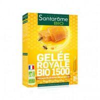 Santarome Bio Gelée Royale 1500 Solution Buvable 20 Ampoules/10ml à ANDERNOS-LES-BAINS