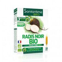 Santarome Bio Radis noir Solution buvable 20 Ampoules/10ml à ANDERNOS-LES-BAINS