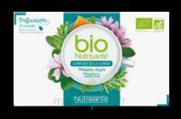 Nutrisanté Infusions Bio Tisane Confort de la gorge 20 Sachets à ANDERNOS-LES-BAINS
