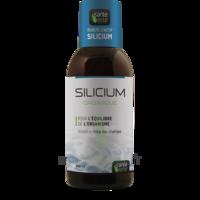 Santé Verte Silicium Solution buvable Fl/500ml à ANDERNOS-LES-BAINS