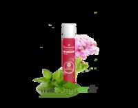 PURESSENTIEL ANTI-PIQUE Roller 11 huiles essentielles à ANDERNOS-LES-BAINS
