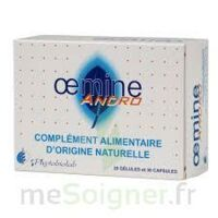 Oemine Andro à ANDERNOS-LES-BAINS
