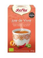 Yogi Tea Joie De Vivre à ANDERNOS-LES-BAINS