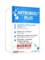 Ineldea Artrobiol Plus 120 Gélules à ANDERNOS-LES-BAINS
