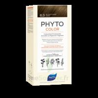 Phytocolor Kit coloration permanente 6.3 Blond foncé doré à ANDERNOS-LES-BAINS