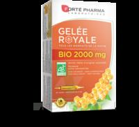 Forte Pharma Gelée Royale Bio 2000 Mg Solution Buvable 20 Ampoules/15ml à ANDERNOS-LES-BAINS