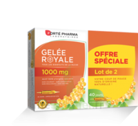 Forte Pharma Gelée royale 1000 mg Solution buvable 2*B/20 Ampoules/10ml à ANDERNOS-LES-BAINS