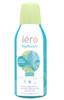 Léro Hydracur Solution buvable 2*450ml à ANDERNOS-LES-BAINS