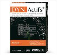 Synactifs Dynactifs Gélules B/30 à ANDERNOS-LES-BAINS