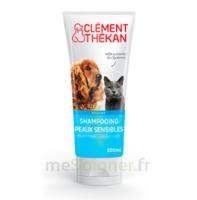 Clément Thékan Shampooing Peaux Sensibles T/200ml à ANDERNOS-LES-BAINS