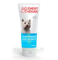 Clément Thékan Shampooing Poils Blancs T/200ml à ANDERNOS-LES-BAINS