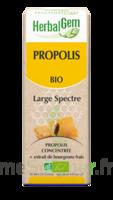 Herbalgem Propolis large spectre Solution buvable bio Fl cpte-gttes/15ml à ANDERNOS-LES-BAINS