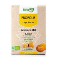 Herbalgem Propolis large spectre Gomme bio B/24 à ANDERNOS-LES-BAINS