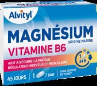Govital Magnésium Vitamine B6 Comprimés B/45 à ANDERNOS-LES-BAINS