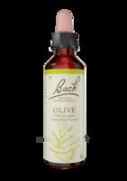 Fleurs De Bach® Original Olive - 20 Ml à ANDERNOS-LES-BAINS