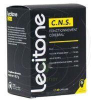 Lecitone C.n.s Caps B/60 à ANDERNOS-LES-BAINS
