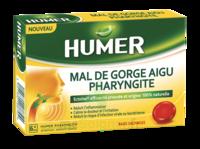 Humer Pharyngite Past Mal De Gorge Baies Sauvages à ANDERNOS-LES-BAINS